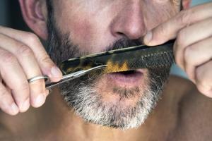 Beard Scissors 2